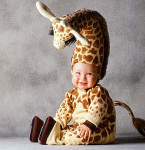Babies in baby animal costumes cute meltdown baby animal zoo - Costume halloween bebe ...