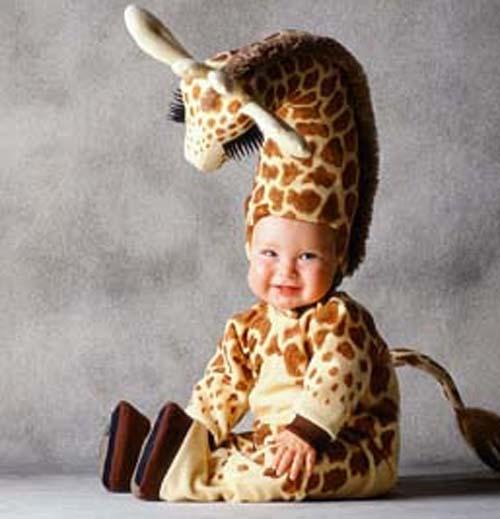 Ta3giraffecd1 Baby Animal Zoo