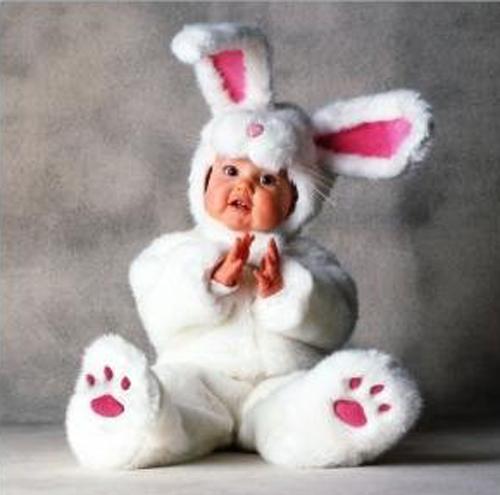 Draftlens17679130module149103608photo1300991297bunny Baby Animal Zoo