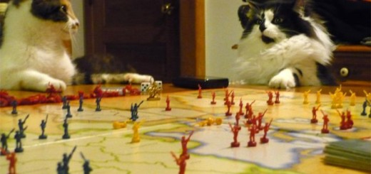 Kittens Plotting World Domination: You Knew It Was Happening!