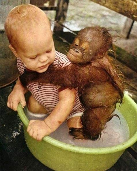 babies-tub